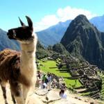 Exploring Cusco and Machu Picchu